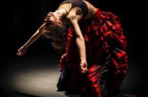 Flamenco Biënnale