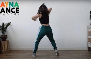 53 dansdocenten geven de dans door in deze video